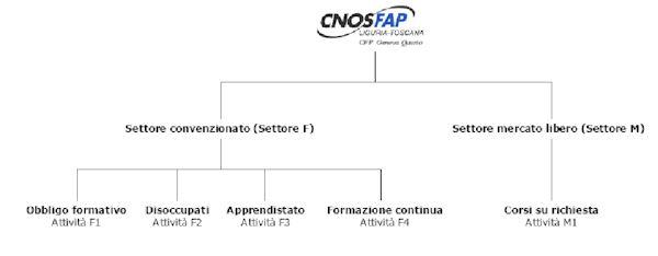 cnos1